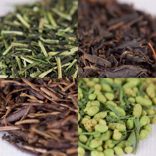 茶葉って実はこんなにも違う!17種類の茶葉を見比べてみる。