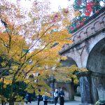 京都の紅葉といえば・・・南禅寺 2014年11月23日