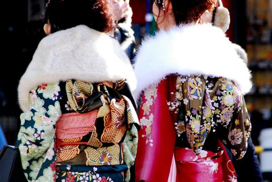 美女の後ろ姿:成人式の振り袖