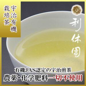 uji-yuki-302